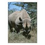 Rinoceronte majestuoso felicitacion