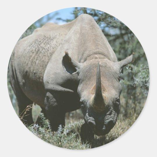Rinoceronte majestuoso pegatina redonda