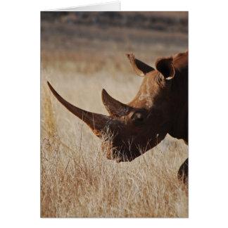 Rinoceronte negro africano con los cuernos grandes tarjeta