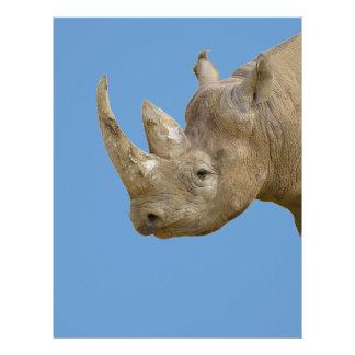 Rinoceronte negro aislado membretes personalizados