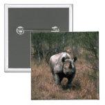 Rinoceronte negro pin
