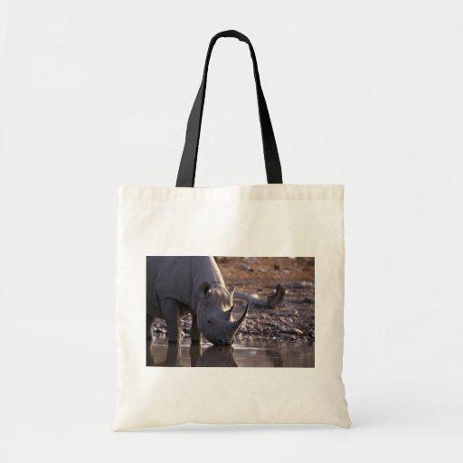 Rinoceronte que bebe en un lugar de riego bolsa