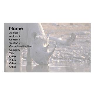 Rinoceronte que bebe en un lugar de riego plantilla de tarjeta personal