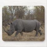 Rinoceronte surafricano alfombrillas de ratones