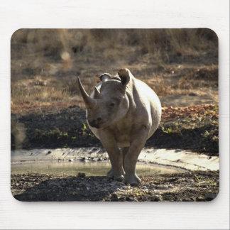 Rinoceronte, vista delantera tapete de ratones