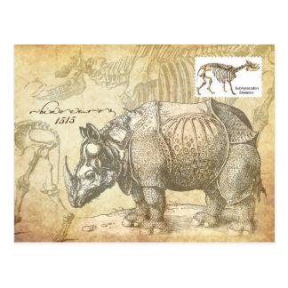Rinoceronte y esqueleto del siglo XVI