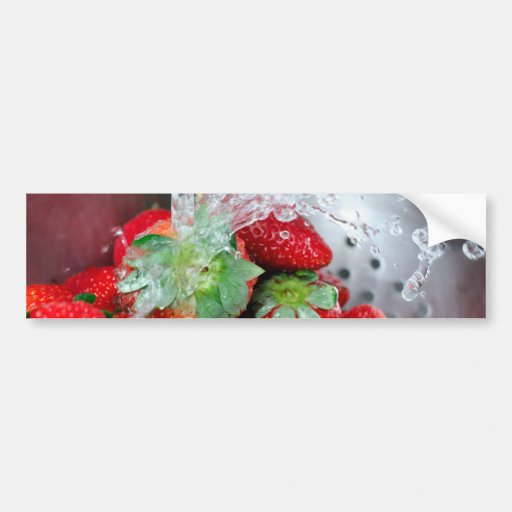 Rinsing Strawberry With Water Bumper Stickers