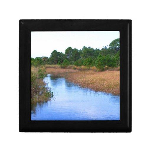 Río a través de la imagen del pantano de la sabana cajas de joyas