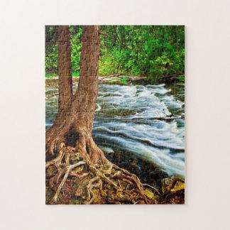 Río a través de las maderas rompecabezas con fotos