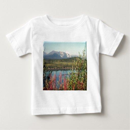 Río Alaska de Chandalar Playeras