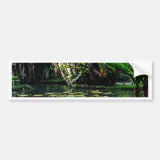 Rio Botanical Garden Bumper Sticker