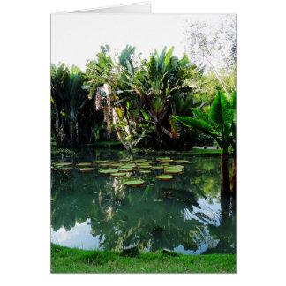Rio Botanical Garden Card