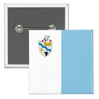 Río Bueno, bandera de Chile Pin
