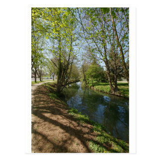 Río con los árboles en primavera postales