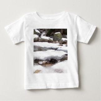 Río congelado en el parque nacional de secoya de poleras