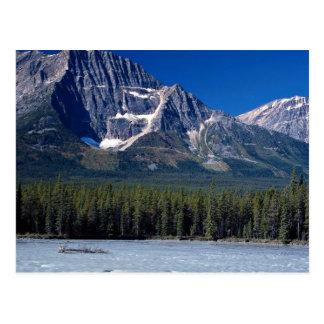Río de Athabasca, ruta verde de Icefield, Alberta, Tarjeta Postal