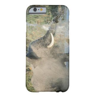 Río de Chobe, Botswana, África Funda Para iPhone 6 Barely There