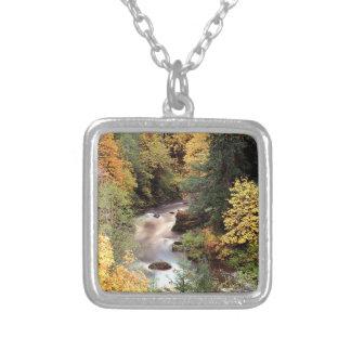 Río de Coquille del color del otoño del árbol Grimpolas