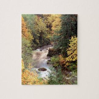 Río de Coquille del color del otoño del árbol Puzzle