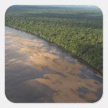 Río de Essequibo, el río más largo en Guyana, y 3 Pegatina Cuadrada