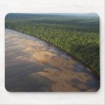 Río de Essequibo, el río más largo en Guyana, y 3 Tapetes De Ratones
