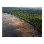 Río de Essequibo, el río más largo en Guyana, y 3 Tarjetas Postales