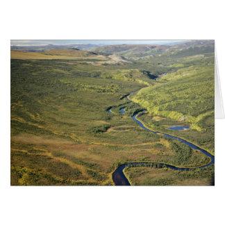 Río de Kanuti en el límite del este de Kanuti W na Felicitación