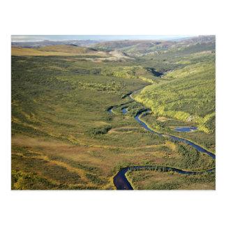 Río de Kanuti en el límite del este de Kanuti W na Tarjeta Postal