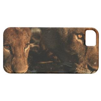 Río de Khwai reserva de la fauna de Moremi Botsw iPhone 5 Cobertura