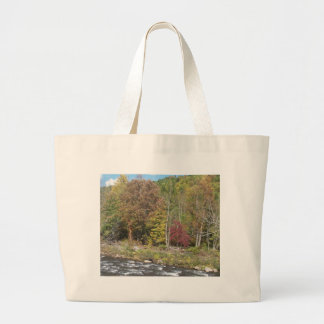 Río de la cereza en el otoño bolsa