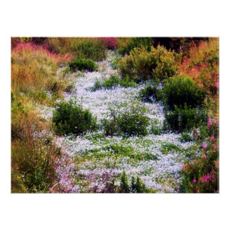 Río de la lona de las flores poster