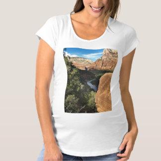 Río de la Virgen de Utah del parque nacional de Playera De Premamá