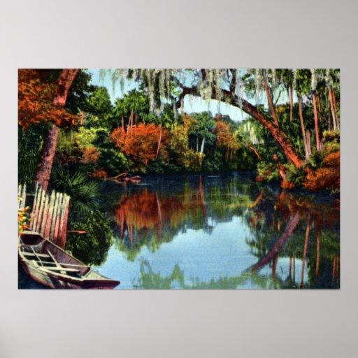 Río de Live Oak la Florida Suwannee Póster