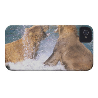 Río de los arroyos, parque nacional de Katmai, Ala Case-Mate iPhone 4 Cárcasas