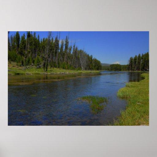 Río de Meandoring en Yellowstone Impresiones