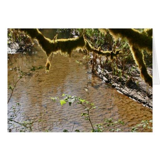 Río de Siuslaw Tarjeta De Felicitación