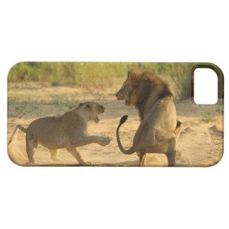 Río de Timbavati, parque nacional de Kruger, el iPhone 5 Fundas