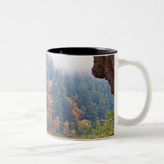 Río de Umpqua del otoño, Oregon Taza De Dos Tonos