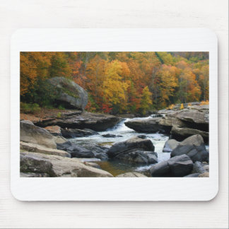 Río de Virginia Occidental en la caída Tapete De Ratones