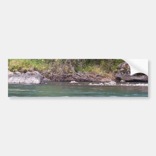 Río de Willamette en el camping negro del barranco Etiqueta De Parachoque