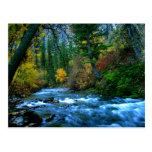 Río del cañón de Logan