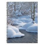 Río del invierno con nieve libros de apuntes con espiral