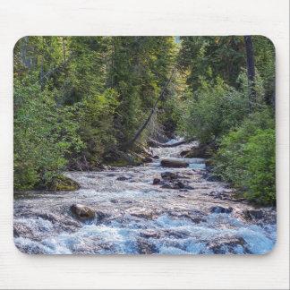 Río del paraíso, parque nacional del Mt. Rainer Alfombrilla De Ratón