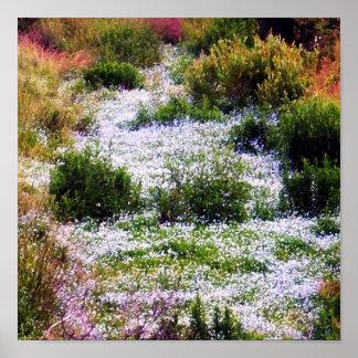 Río del poster de las flores