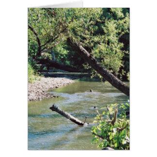 Río del remache escénico tarjetón