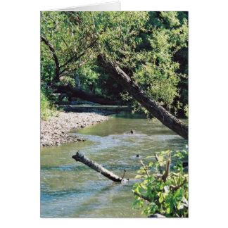 Río del remache escénico felicitacion