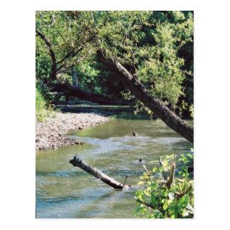 Río del remache escénico postal