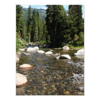 Río en el bosque 2 fotografias