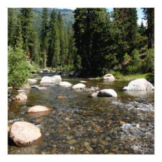 Río en el bosque 2 impresión fotográfica