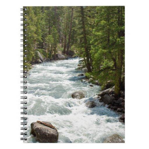 Río en el bosque libreta espiral